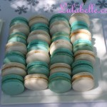 Frozen Inspired Macarons